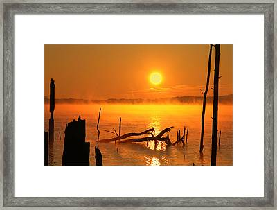 Mantis Sunrise Framed Print
