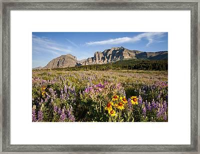 Framed Print featuring the photograph Many Glacier Spring by Jack Bell