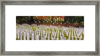Many Have Fallen Framed Print by Jerry Fornarotto