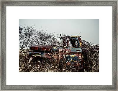 Many Seasons  Framed Print by Off The Beaten Path Photography - Andrew Alexander