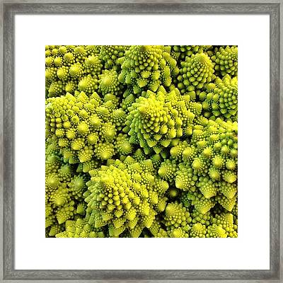 #many_nio Framed Print