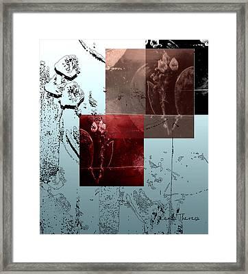 Manzanita Aquarium Framed Print by Centa Theresa Uhalde