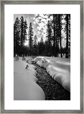 Manzanita Creek Framed Print by Randy Wood