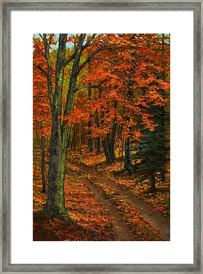 Maple Forest Framed Print
