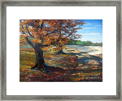 Maple Lane Framed Print