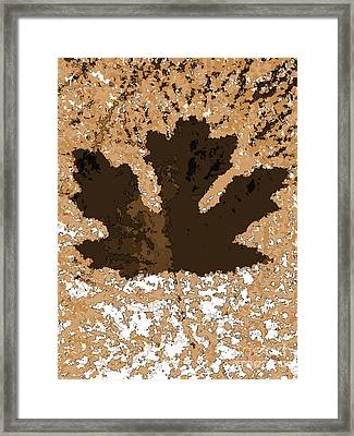 Maple Leaf Brown  Hues Framed Print by R Muirhead Art