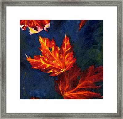 Maple Leaves In Autumn Framed Print by MM Anderson