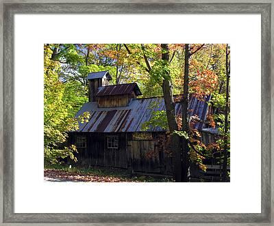 Maple Syrup Barn Framed Print by Robert Lozen