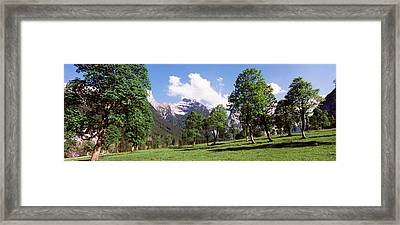 Maple Trees With Mountain Range Framed Print by Panoramic Images