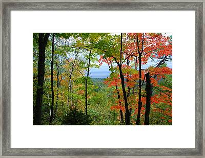 Framed Print featuring the photograph Maples Against Lake Superior - Tettegouche State Park by Cascade Colors