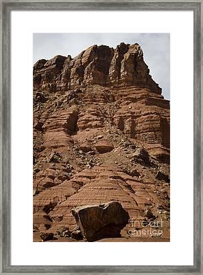 Marble Canyon Vi Framed Print by Dave Gordon