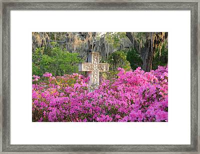 Framed Print featuring the photograph Marble Cross And Azaleas by Bradford Martin