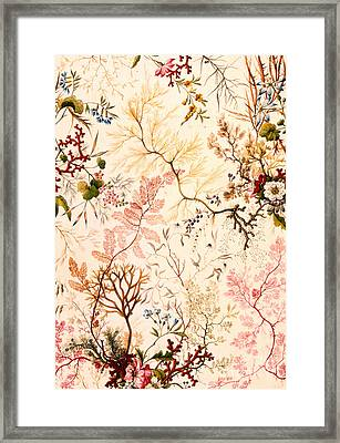 Marble End Paper  Framed Print by William Kilburn