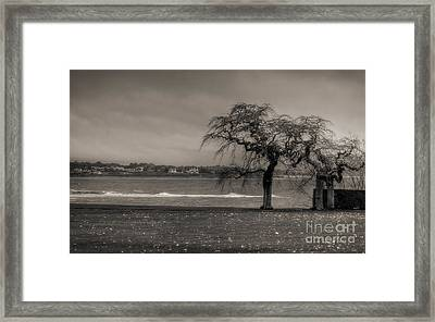Framed Print featuring the photograph Marble House - Newport by Vicki DeVico