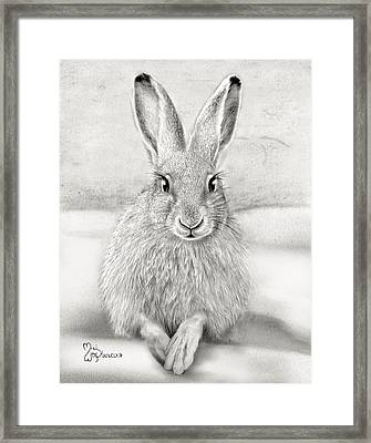 March Hare Framed Print by Miki Krenelka