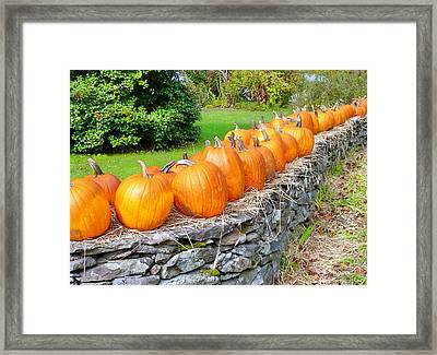 March Of The Pumpkins Framed Print by Janice Drew