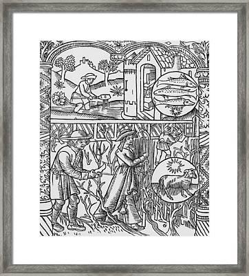 March  Pisces Framed Print