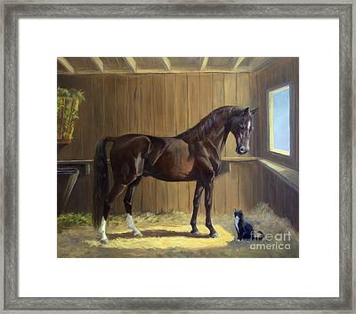 Marco And Sneaker Framed Print by Jeanne Newton Schoborg