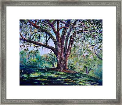 Marcus Oak Framed Print