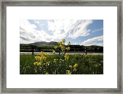 Marcy Field Keene  Framed Print