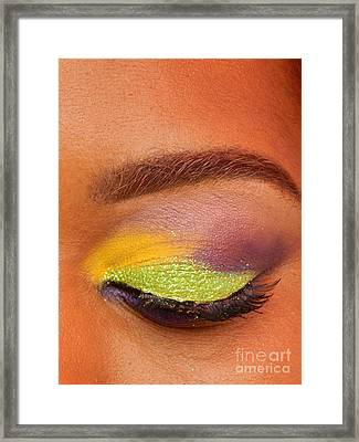 Mardi Gras 2014 Eye See Colors Of Mardi Gras Framed Print