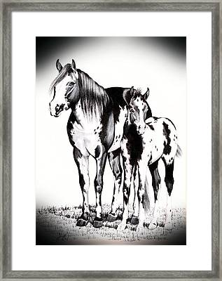 Mare And Colt Framed Print
