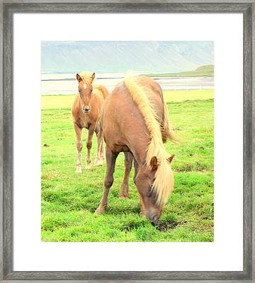 Natural Mother And Child Framed Print by Hilde Widerberg