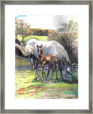 Mare And Foal Framed Print by Stan Esson