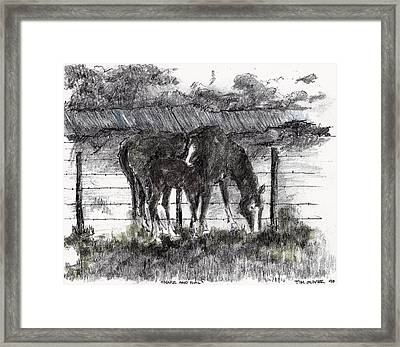 Framed Print featuring the mixed media Mare And Foal by Tim Oliver