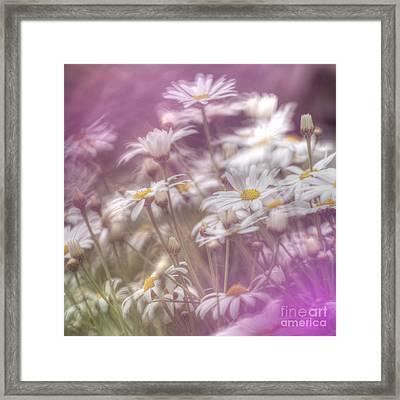 Margarite Field Framed Print