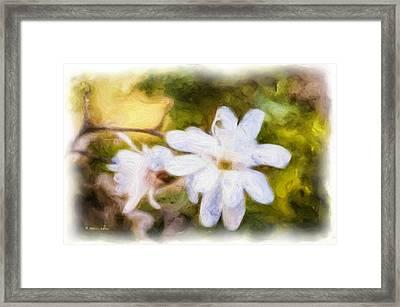 Margherita Framed Print