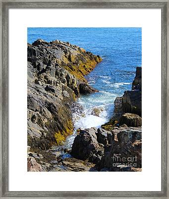 Marginal Way Crevice Framed Print