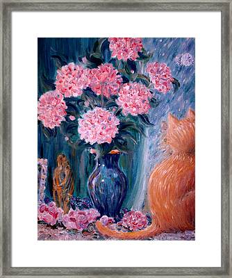 Marigold At The Window Framed Print