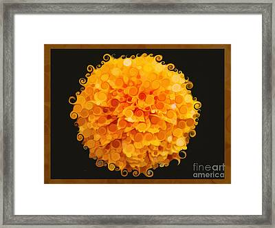 Marigold Magic Abstract Flower Art Framed Print by Omaste Witkowski