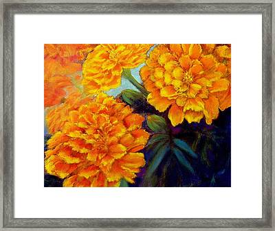 Framed Print featuring the pastel Marigolds In Bloom Pastel  Sold by Antonia Citrino