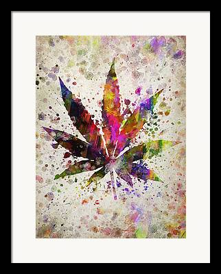 Marijuana Framed Prints