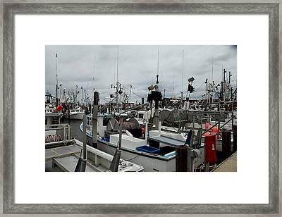 Marina 016 Framed Print