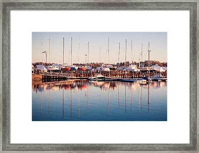 Marina Colors Framed Print by Lee Costa