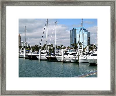Framed Print featuring the photograph Marina In Sarasota by Oksana Semenchenko