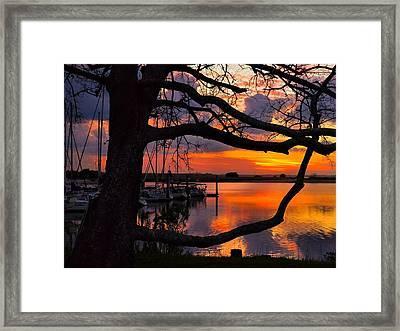 Marina Mood Framed Print