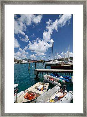 Marina St Thomas Virgin Islands Framed Print by Amy Cicconi
