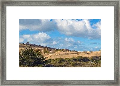 Marina State Beach Dunes Iv Framed Print by Jim Pavelle