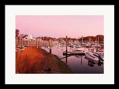 Warwick Marina Park Framed Prints