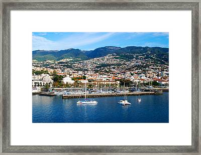 Marina Framed Print by Tracy Winter