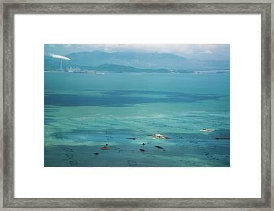 Marine Fish Farm Framed Print