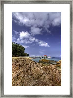 Marine Park Framed Print by Mario Legaspi