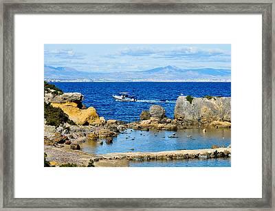 Marine Reserve Framed Print
