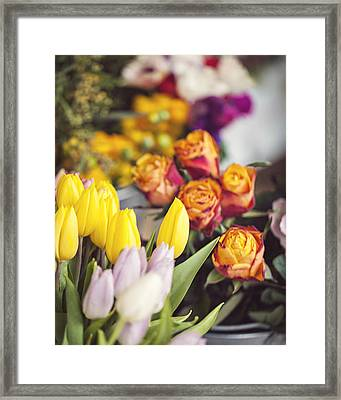 Market Tulips - Paris, France Framed Print