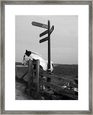 Framed Print featuring the photograph Marking The Way by Meaghan Troup