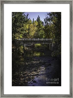 Markleeville Creek Framed Print